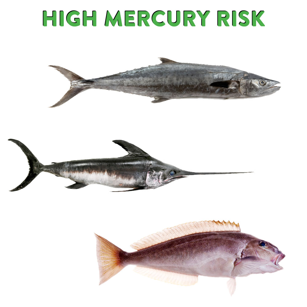 What are the mercury levels in different types of fish for Fish with high levels of mercury