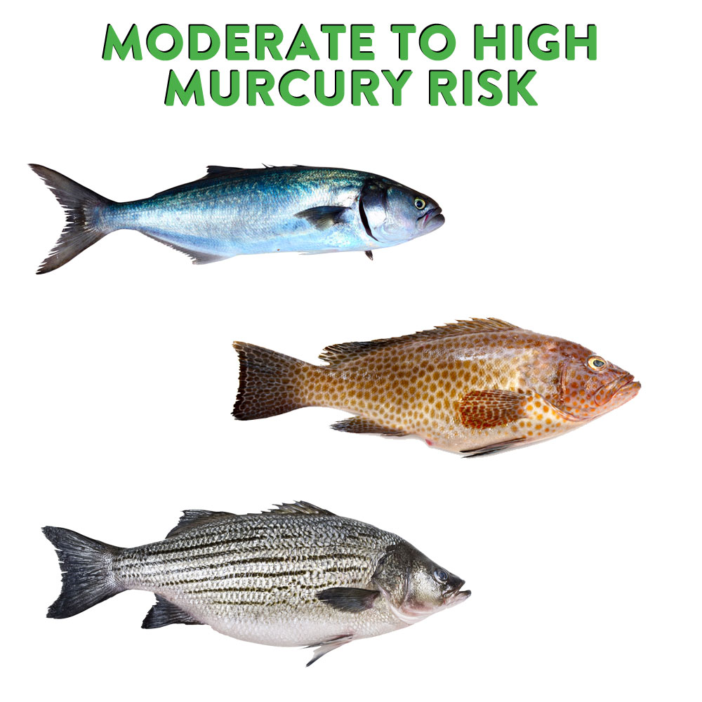 What are the mercury levels in different types of fish for Healthiest types of fish